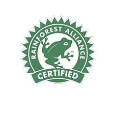 Siegel Rainforest Alliance