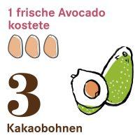 Kakaobohnen2